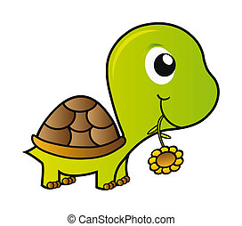 turtle - nice illustration - green young turtle isolated on...