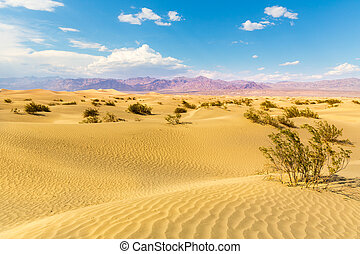 Sand dunes against mountains on background at Death Valley...