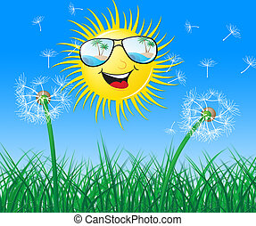 Sun And Flowers Shows Summer Time Outdoors