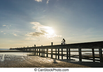 Silhouettes of cyclists with bicycles on the bridge warm tone