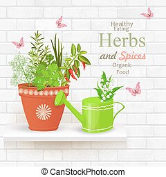 vintage brick wall banner of with collection of delicious herbs