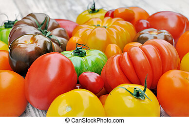 collection of tomatoes - collection of various and colorful...