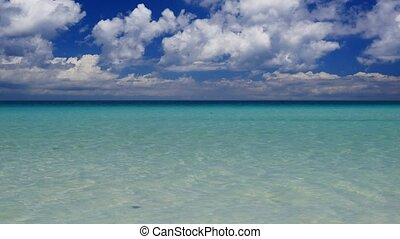 Exotic tropical beach - Tranquil scenery of the turquoise...
