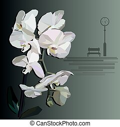 vector orchid with a bench and street clock in the foreground