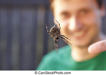 Huge spider hang on net with smiling blur man on background....