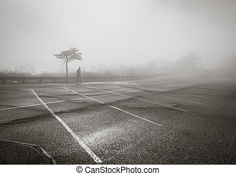 A person is seen walking in thick fog in the park