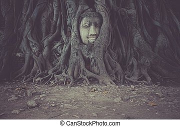 Head of Buddha statue in the tree roots at Wat Mahathat temple, Ayutthaya, Thailand.