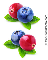 ?ranberry blueberry mix - Isolated cranberry blueberry mix....