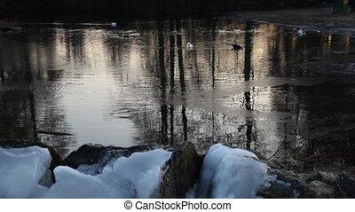 frozen pond in winter season