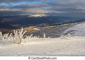 Winter mountain scenery in Bieszczady mountains, South...