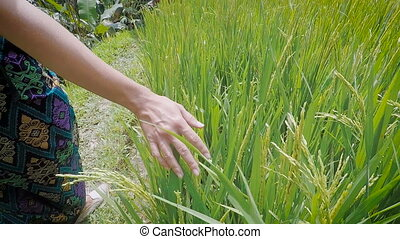 Close up of right hand of young girl walking in the meadow...