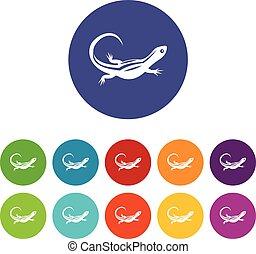 Lizard set icons