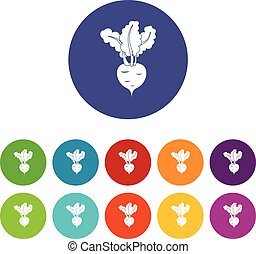 Fresh beetroot set icons in different colors isolated on...