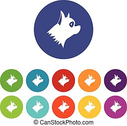 Pinscher dog set icons in different colors isolated on white...