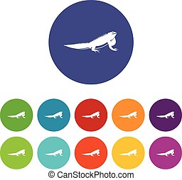 Iguana set icons in different colors isolated on white...