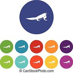 Iguana set icons