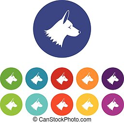 Collie dog set icons in different colors isolated on white...