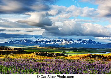 Iceland - Typical Iceland landscape with mountains and...