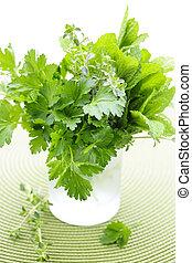 Fresh herbs in a glass