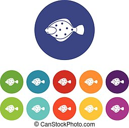 Flounder fish set icons in different colors isolated on...