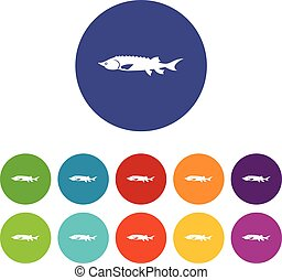 Fresh sturgeon fish set icons in different colors isolated...