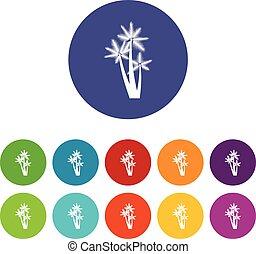 Three tropical palm trees set icons