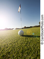 Low angle shot of golf ball on green - Image of a golfball...