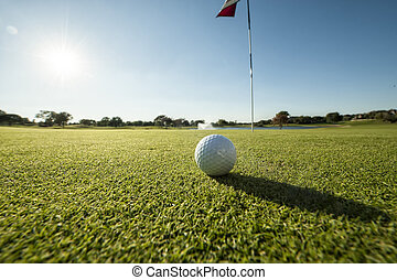 Golf ball on green low angle