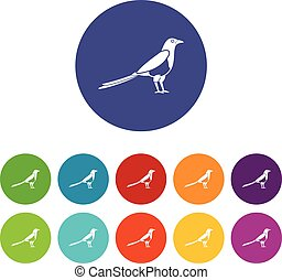 Bird magpie set icons in different colors isolated on white...