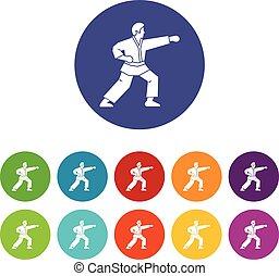 icônes, ensemble, combattant,  aikido