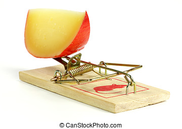 mousetrap - spring mousetrap with large piece of cheese...