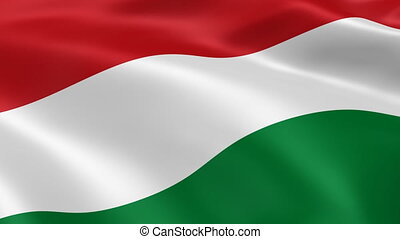 Hungarian flag in the wind. Part of a series.