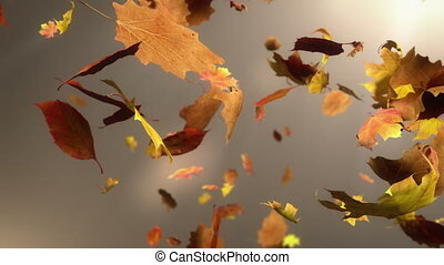 Falling Leaf Loopable Background