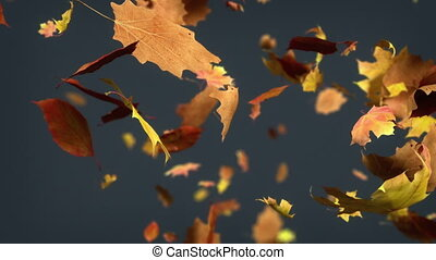 Falling leaves Loopable Background. - High quality animated...