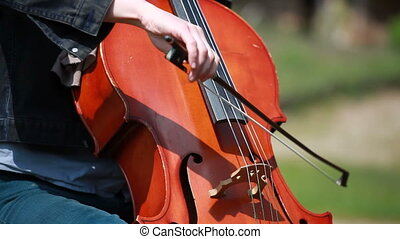 Woman plays on the cello on private open air concert. The...