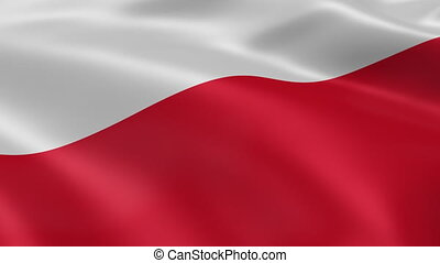 Polish flag in the wind. Part of a series.