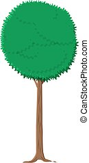 ash tree isolated on white. vector illustration in flat...