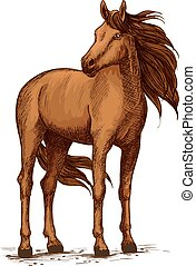 Sketch of horse standing, wild mustang or stallion - Stand...