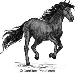 Sketched stallion gallop or horse abling - Animal horse or...