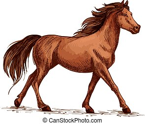 Horse or stallion, mustang running sketch - Equine animal or...