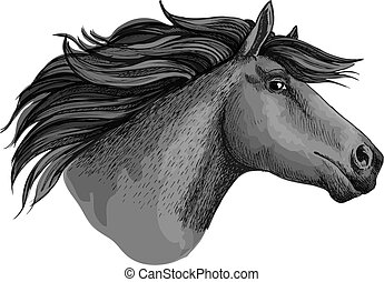 Mustang horse or stallion head sketch - Mare horse or...