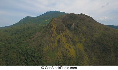 Tropical forest in the mountains. Camiguin island...
