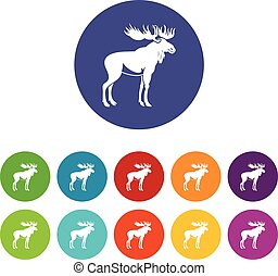 Moose set icons in different colors isolated on white...