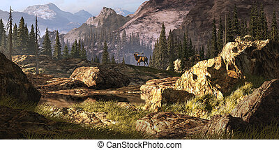 Elk In The Rocky Mountains - Elk near a stream in a Rocky...