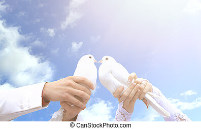 Pigeons on the wedding in the hands of young people on the...