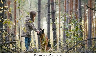 Young pretty cute woman walking in autumn forest with her pet - german shepherd