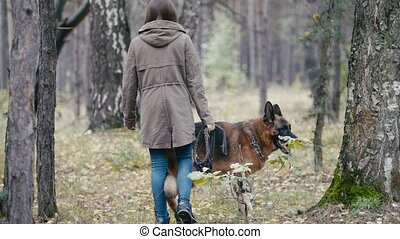 Young woman and her pet - german shepherd - walking on a...