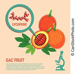 Gac Fruit health Benefits of Lycopene with Microscope