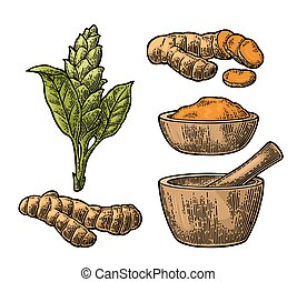 Turmeric root, powder and flower with pestle and mortar....