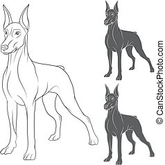 Set of vector illustrations with Doberman. Isolated objects...